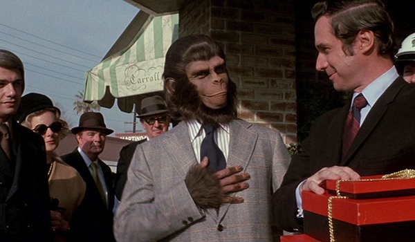 Time-traveling ape Cornelius tries on some human clothes after return to Earth of his past in ESCAPE FROM THE PLANET OF THE APES.