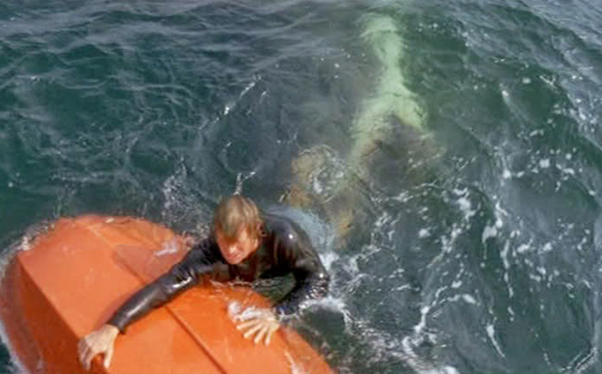 Still image of the estuary shark attack scene in JAWS, referenced by Greg Nicotero in this episode of the Damn Dirty Geeks podcast.