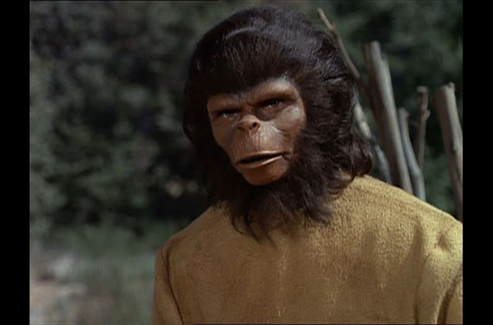 Bobby Porter extended his participation in the APES franchise, playing two character roles in the PLANET OF THE APES television series, seen here as Remus in the 1974 episode 'The Good Seeds'.
