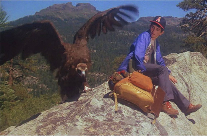 Bobby Porter as John being menaced by an ominous vulture in DAY OF THE ANIMALS (1977).